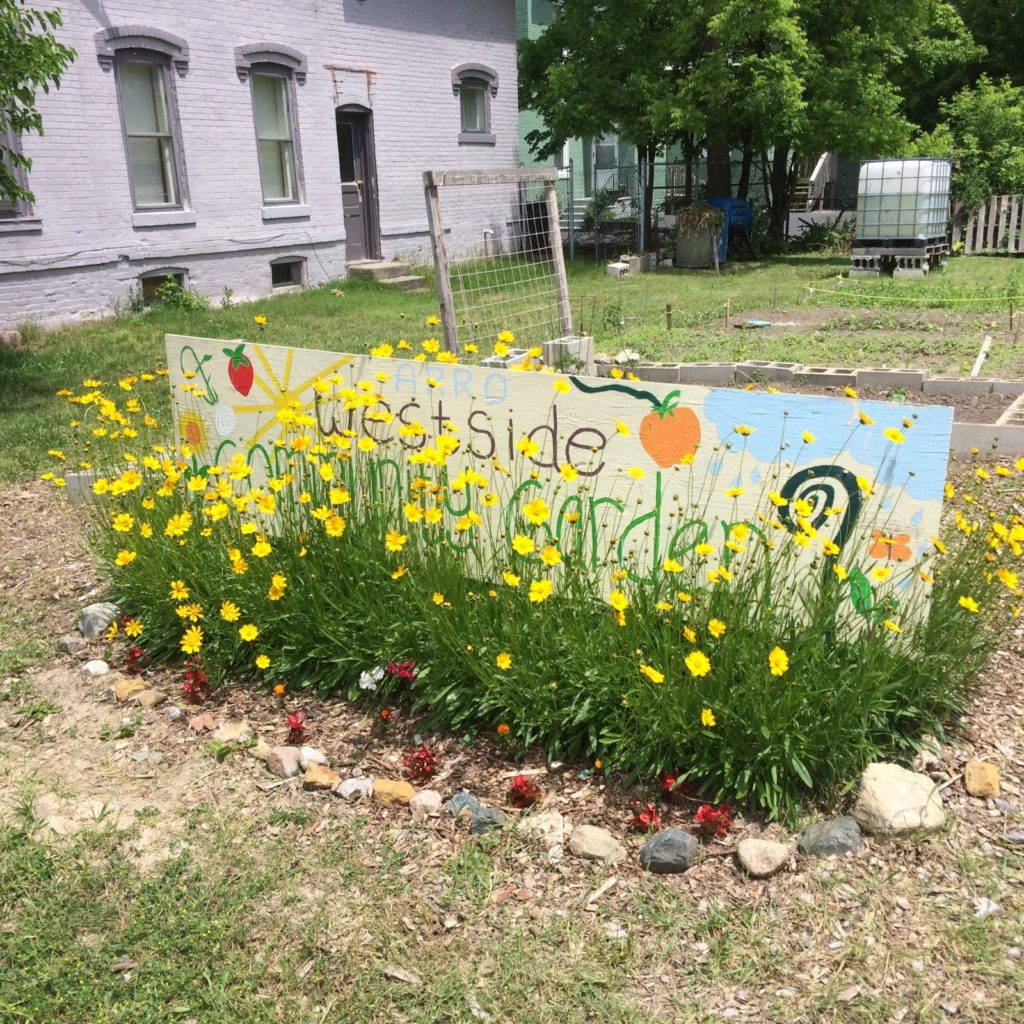 a flower garden outside with a sign in it